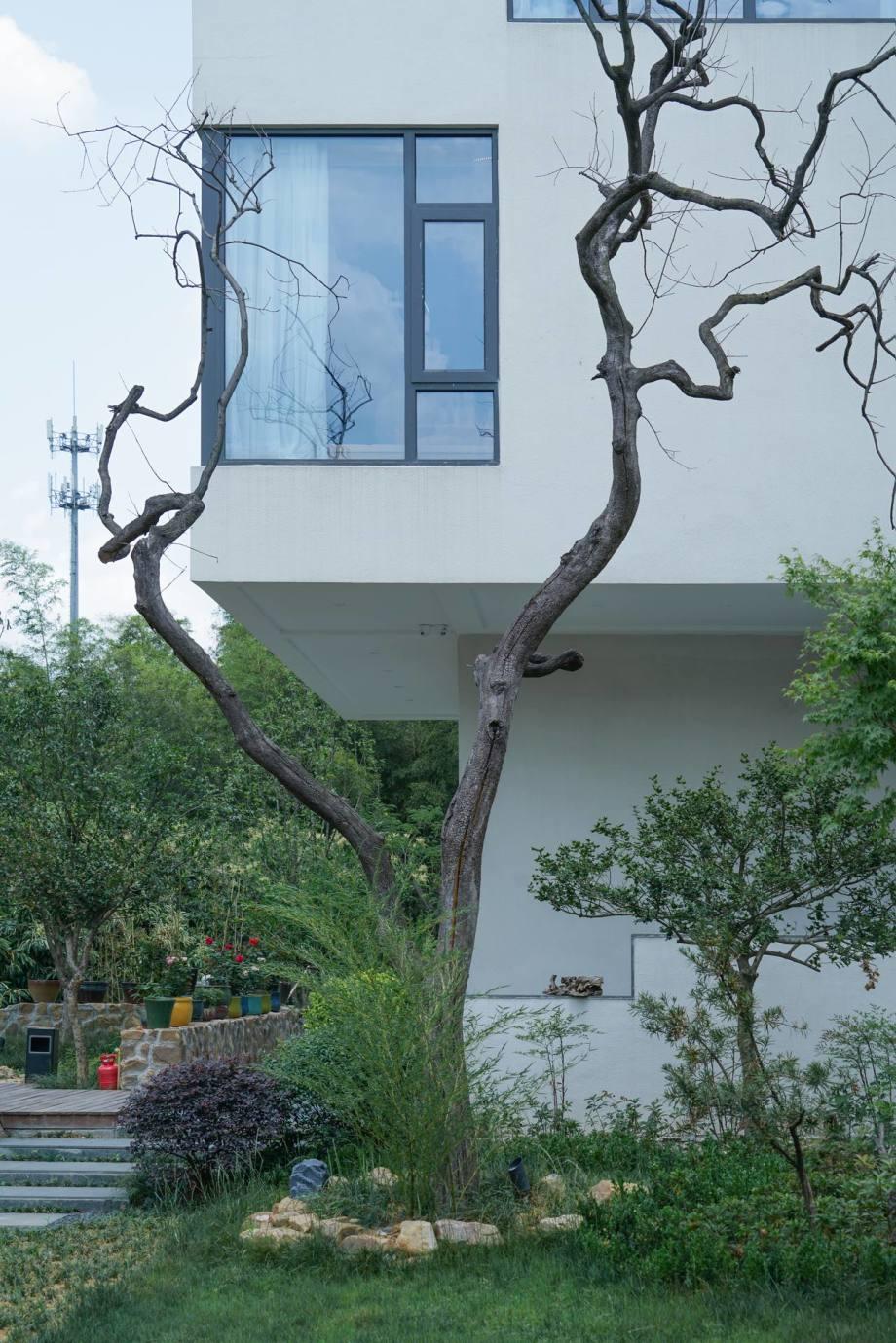 窗景\庭院图片